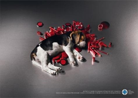Seguimos con perritos, pero esta es fea. Campaña para salvar a los perros víctimas de los test de las cosméticas