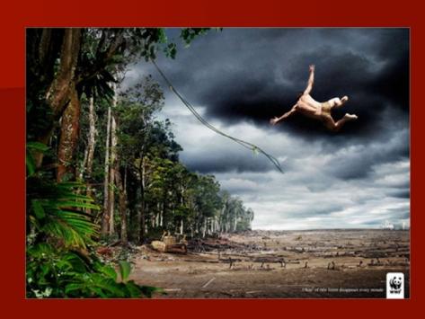 Justo que hoy es el Día de la Tierra, este muy bueno de WWF
