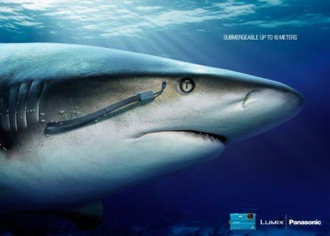La Lumix shark puede sumergirse hasta 10 metros